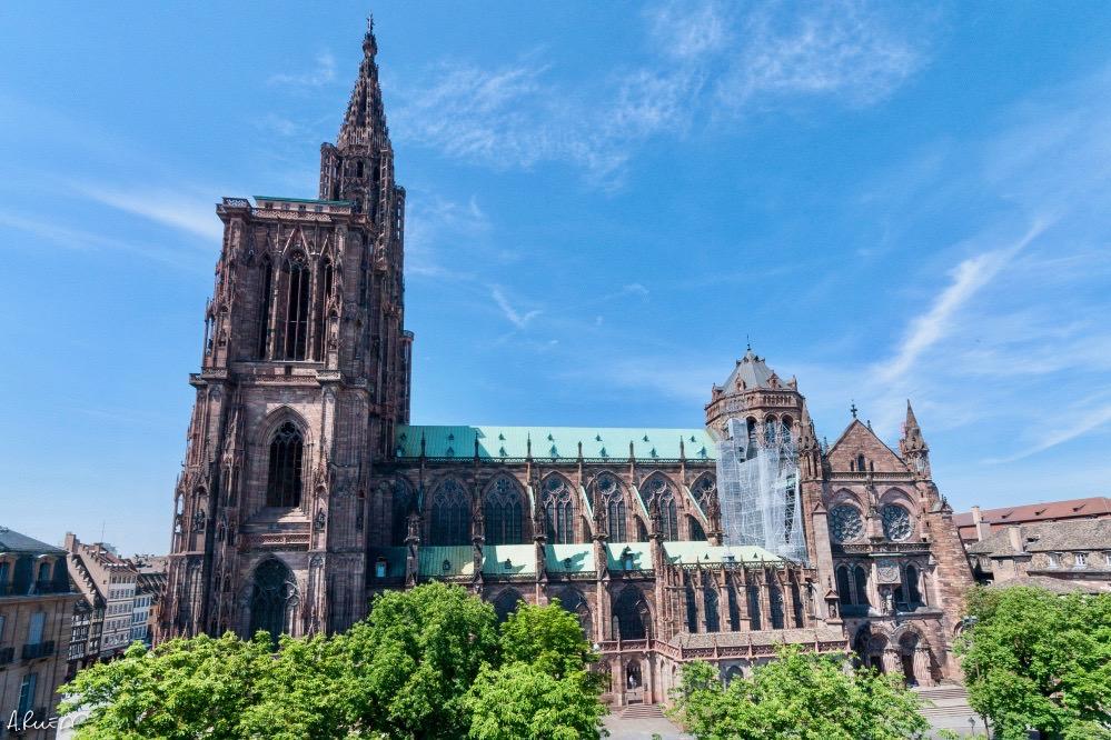 Y-FED Strasbourg